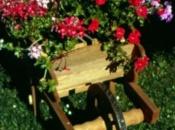 Fioriera carriola in legno