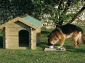Cuccia in legno per cani