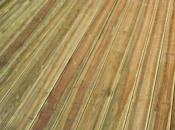 Pavimento basic in legno