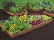Vasca contenitore di terra in legno per orticoltura