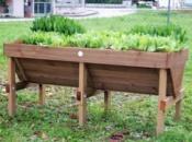 Vasca-orticoltura-in-legno-3